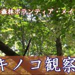 北広島森林ボランティア・メイプル キノコ観察会(2017.10)