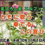 マイタウンニュース『第38回 北ひろしまエルフィン音楽祭』(2018.10)