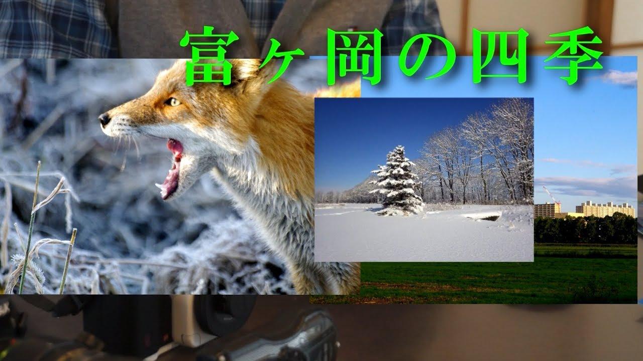 北広島の自然~富ヶ岡の四季(2019.6)