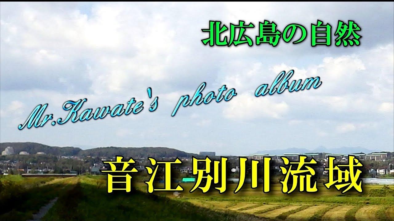 北広島の自然~音江別川流域(2019.9)