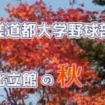 星槎道都大学野球部寮 北立館の秋(2019.11)