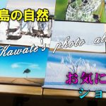 北広島の自然~私のお気に入りショット(2020.1)