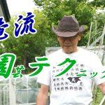 """<span class=""""title"""">俺流園テクPart2~夏はこんな感じ(2020.10)</span>"""