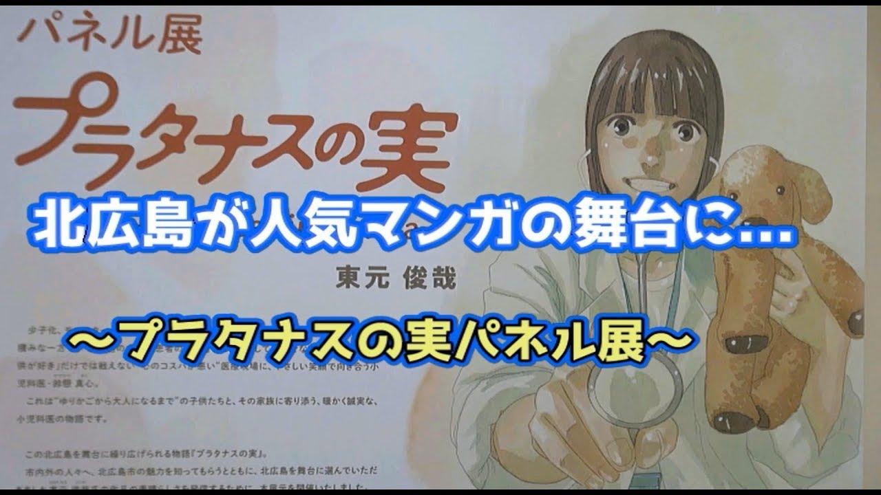 プラタナスの実パネル展~北広島が人気マンガの舞台に…(2021.3)
