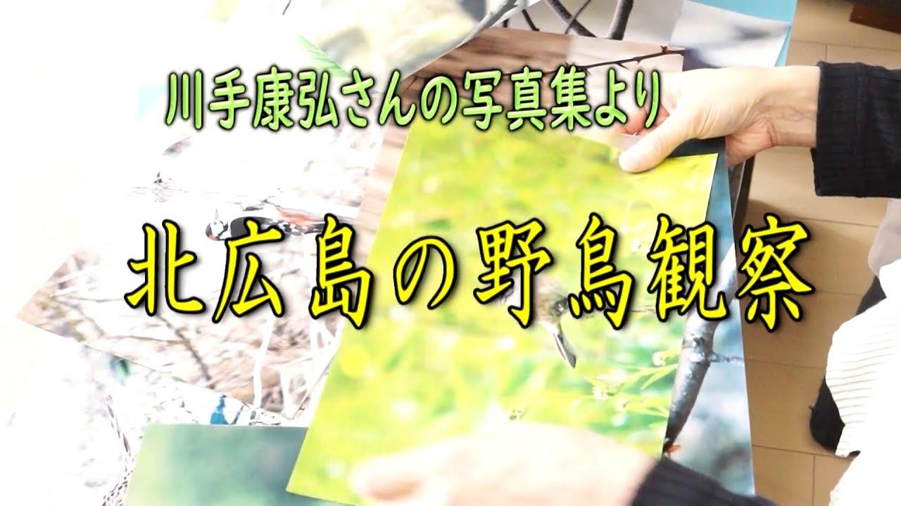 北広島の野鳥観察(2021.4)
