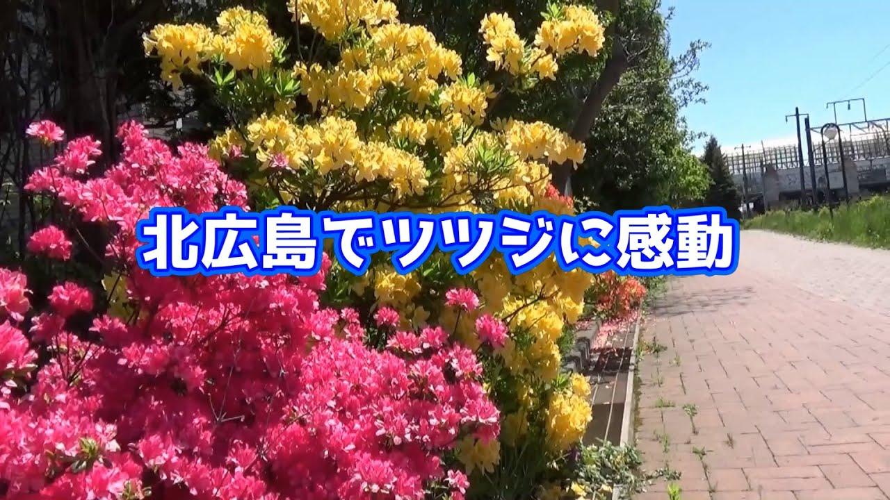 マイタウンニュース『北広島でツツジに感動』(2021.6)