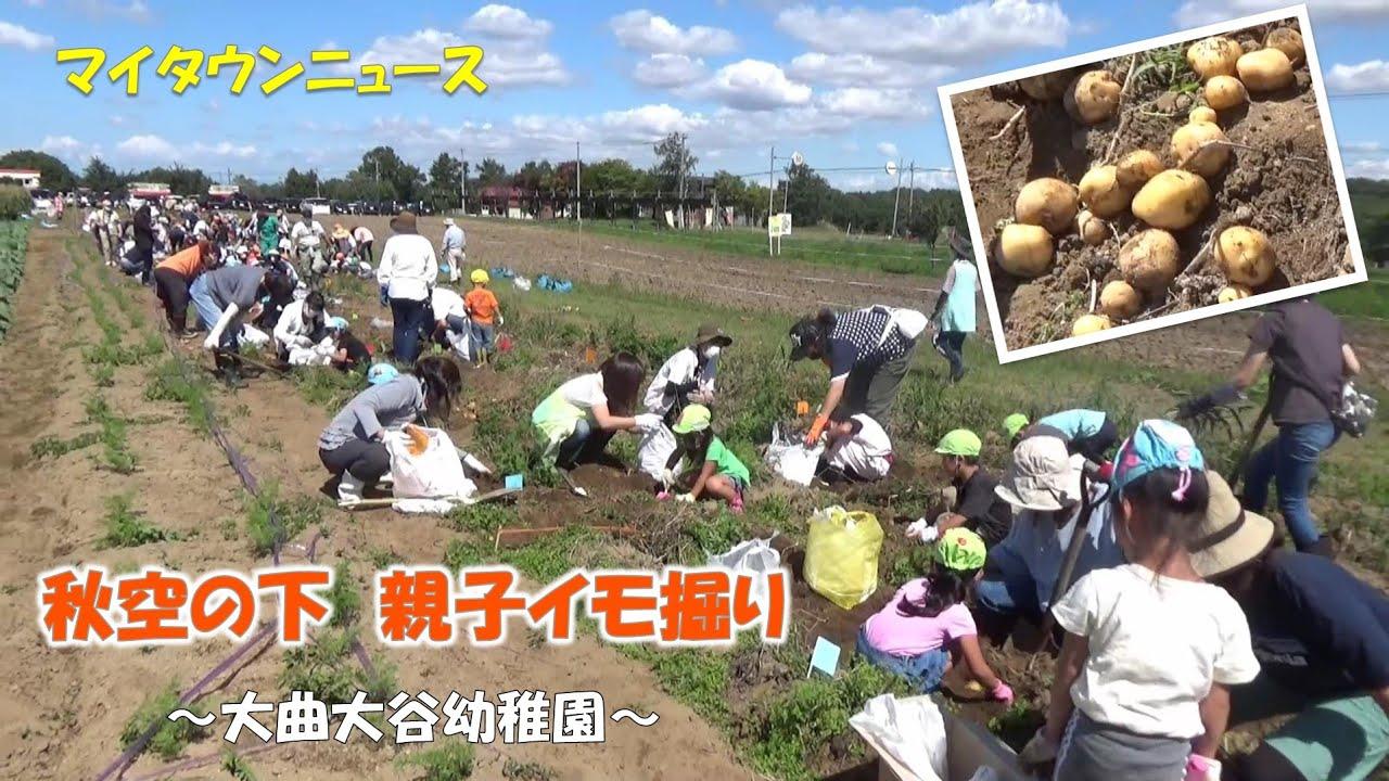 マイタウンニュース『秋空の下 親子イモ掘り』(2021.9)